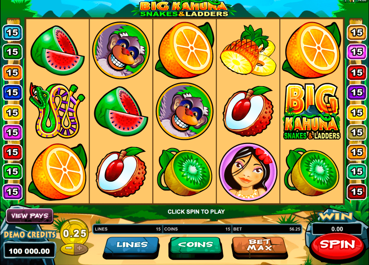 big kahuna snakes and ladders microgaming