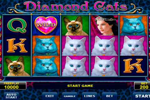 diamond cats amatic