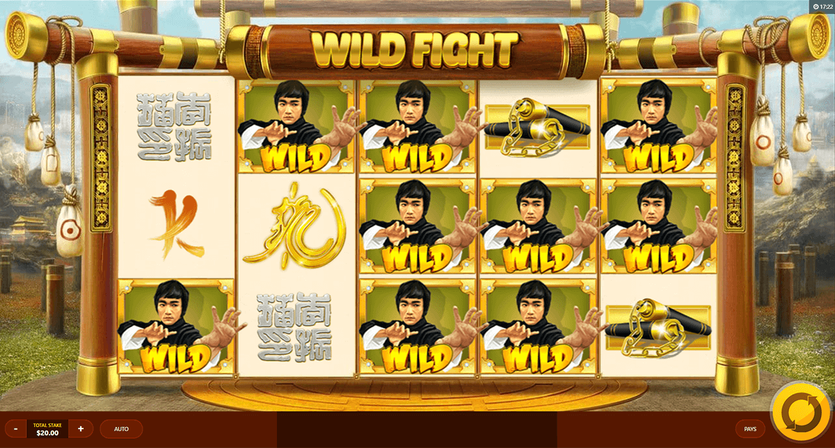 wild fight red tiger